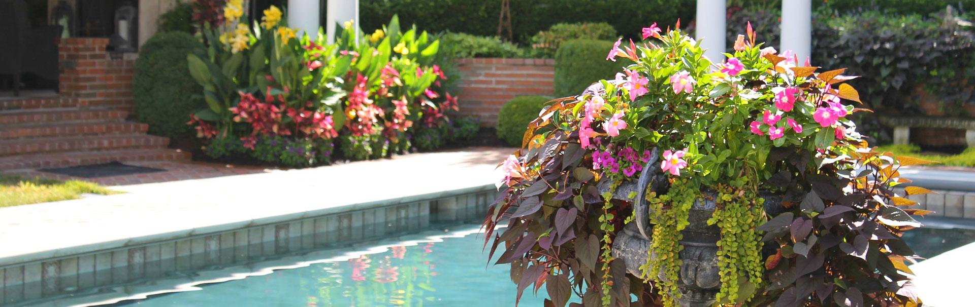 pool landscaping in kansas city