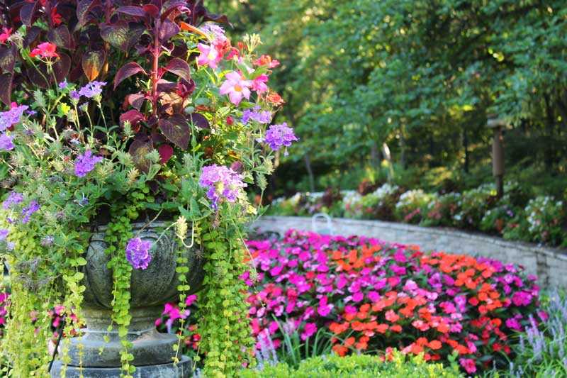 potted landscaping designs